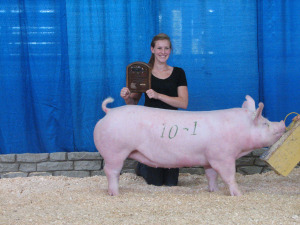 Champion York Gilt, 2013 Minnesota State Fair, Katie Loppnow