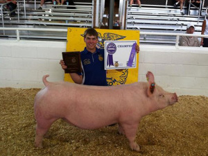 5th Overall, Reserve Champion Purebred, Champion York, 2014 Minnesota State Fair Junior, Barrow Classic, Levi Anderson